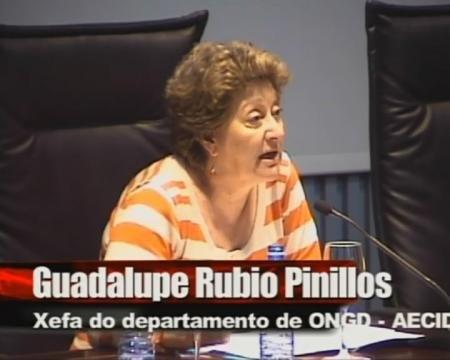 Guadalupe Rubio Pinillos. Xefa de departamento de ONGD da Axencia Española de Cooperación Internacional para o Desenvolvemento (AECID). - Xornadas sobre a normativa das axudas de cooperación internacional en Galicia